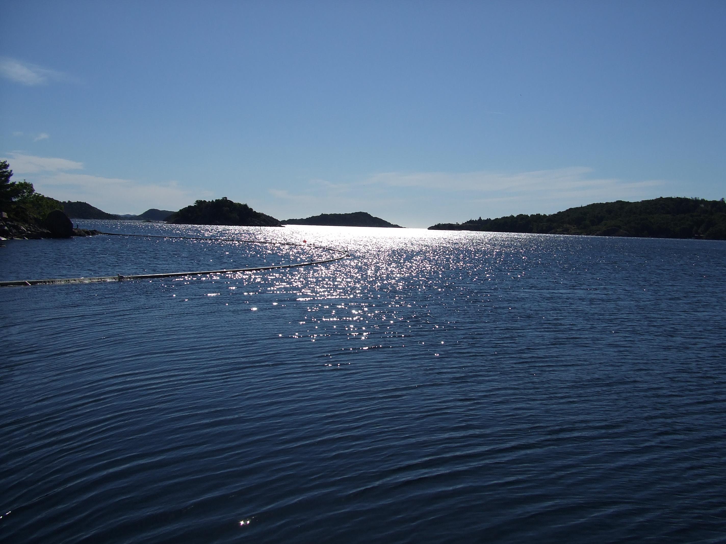 Bilder, Norwegen, Fischen: http://www.isabellaschreiner.de/Wir_uber_uns/body_bilder__norwegen__fischen.html